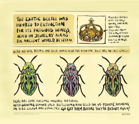 At the #KochiMuzirisBiennale, did you chance upon the Muziris Beetle? - A #Brainded report by 'Katta localite' Kuttappan, with Appupen (2/2)