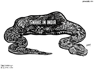 New law! Snakes cannot eat lions in India